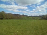 Pony/Horse Paddock for rent on Bridleway!(2 acres)