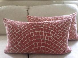 Cushions (2) John Lewis/Raine & Humble