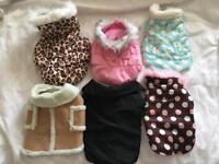 Smaller breed dog coats