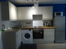 NEWLY REFURBISHED 3 DOUBLE BEDROOM GROUND FLOOR FLAT