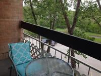 Pet friendly 1 bedroom apartment for August 1 sublet