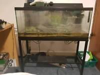 3ft fish tank aquarium with stand