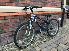 Teen size bike