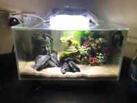 Fluval Edge 35 Tropical Fish Tank Aquarium Heater