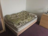 3 rooms available for August in flat in Dundee centre - rent 1, 2 or all the flat. £300 each