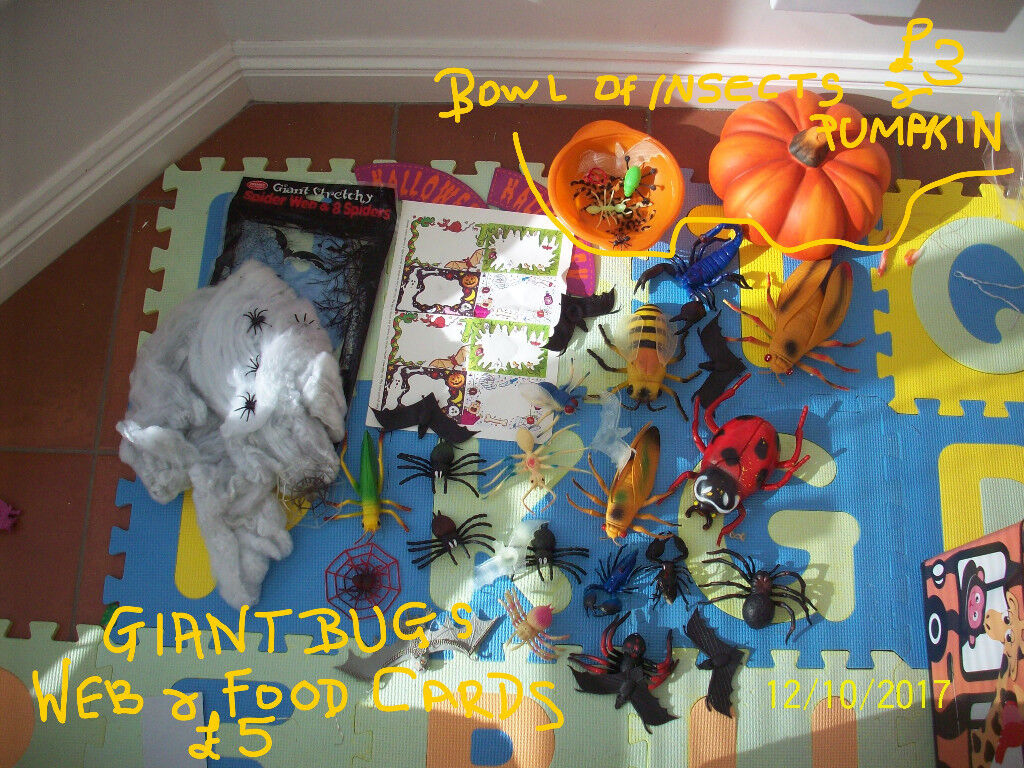 HALLOWEEN ITEMS,GIANT BUGS,WIG OF SPIDERS,MASK ,POTTERY PUMPKIN