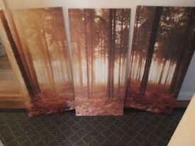 3 Part Canvas Print
