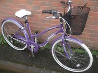 Gemini Cruiser Bike
