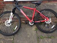 Phaze Apollo mountain bike