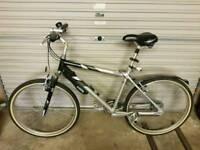 Raleigh Ride 200 bike.