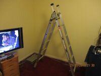 Abru 3-way ladder