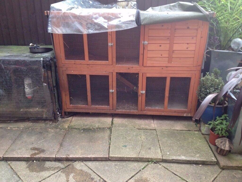 Amazing 2 level rabbit hutch