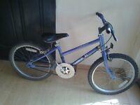 "raleigh calypso bike 20"" wheels"