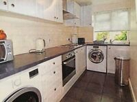 A lovely, large, immaculate flat 1 bed + handy 2nd room. only £25 fees Gardens, parking top location