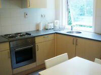 Great studio apartment, gas central heating, large kitchen, Bournemouth gardens