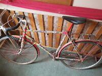 CUSTOM railey bike