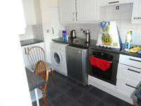 2 bed flat fully furnished £540 pcm
