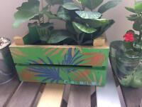 Painted Palm Leaves Small Garden Patio Window Window Boxes