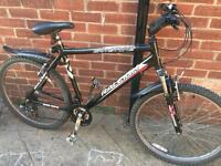 "Men's 20"" Raleigh bike bicycle inc free lights & delivery. D lock available"