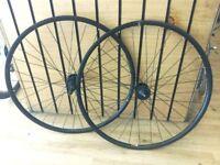 700c Disc Wheels Bontrager