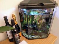 30L Tropical Aquarium + all accessories (details in description)
