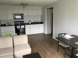 Student Apartments for Rent! Great for Sharing! WIFI Included! Kitchener / Waterloo Kitchener Area image 4
