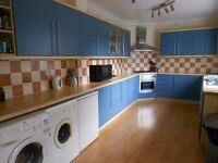 Large F/F Double Room in House Share Detached House City Centre NR1 Available 1st June