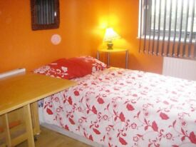 Modern Furnished Single Room (Double Bed)
