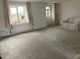 Nearly New Smoke and Pet Free Large Manmade Carpet