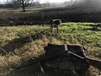 WANTED - Land to Buy Acres, Bristol, Somerset, Bath
