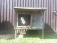 Rabbit hutch with bottle