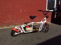Bespoke Custom Lowrider Petrol scooter/goped/mini moto/midi moto/motorised bicycle
