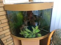 160 litre corner aquarium complete with beech effect cupboard