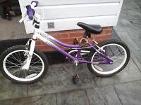 Girls bike 12 in wheels make is silver fox
