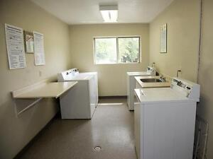 2 Bedroom London Apartment for Rent on multiple bus routes London Ontario image 3