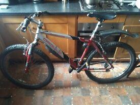 Apollo Transition Adult Mountain Bike