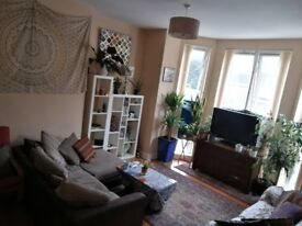 Double room to rent in attractive seafront apartment