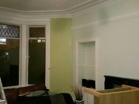 Cleaner wallpaper hanging and stripping painter