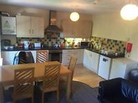 2 Large double rooms in bright city centre apartment!!