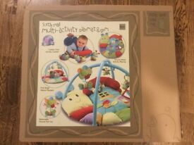 Baby Multi-activity playmat and gym - bargain £15