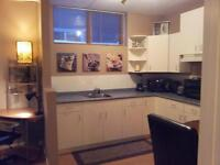 MOVE-IN OCT 23rd FULLY FURNISHED BEAUTIFUL 1 BEDROOM  APARTMENT