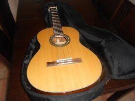 walden N450 classical concert Guitar