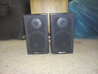 Pair of Skytronic Speakers in good condition