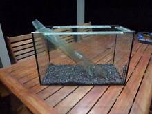 60L Glass Fish tank with pump and cleaning equipment Highgate Unley Area Preview