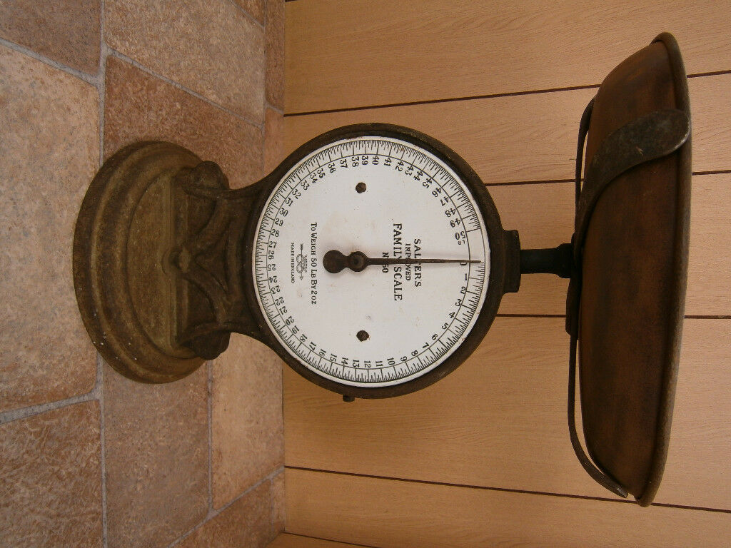 Salter Family Scales
