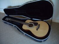 Brunswick Acoustic Guitar and Case