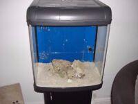 fish tank/ marine tank