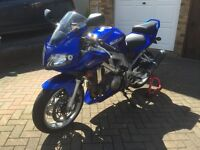 SUZUKI SV1000S 2003 12MONTHS MOT NEW TYRES & BATTERY