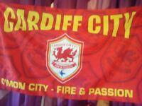 Cardiff mega flags
