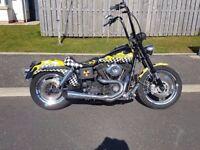 Harley Davidso custom Dyna FXDX